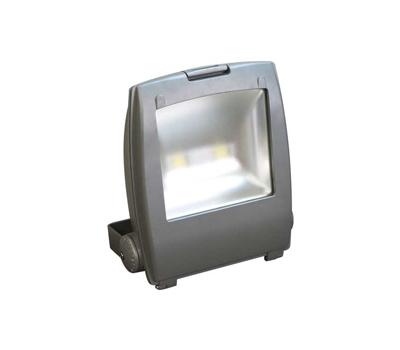 Прожектор светодиодный 2LED*60W белый 230V серый IP65 LL152 Feron