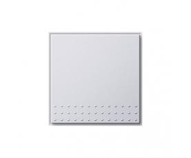 Световой сигнал Е10 или Е14 со штифтовым замком для крышек со штифтовым замком 016930 Gira