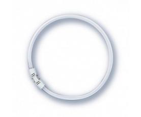 Лампа люминисцентная кольцевая FC 22/840 2GX13 225mm 4000K OSRAM